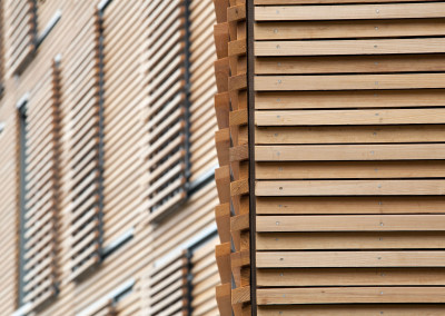 "Cypress cladding.<br/> <span class=""gallery-courtesy"">Courtesy Matthew Snyder</span>"